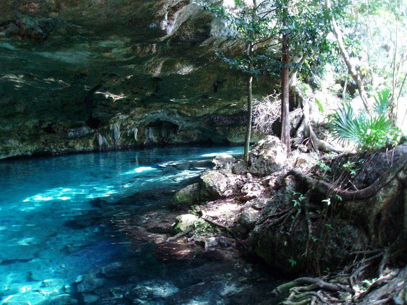 Cenotes Dos Ojos & Bat Cave Entrance